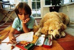 Готовность ребенка к обучению
