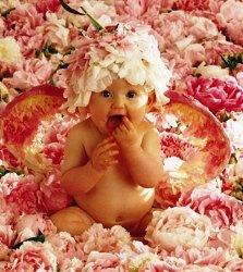 Развитие игровой деятельности детей, игра, малыш, цветы, лепестки, младенец, ребенок