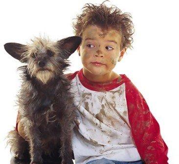 Если ребенок мечтает о собаке