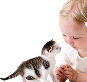 Малыш просит котенка