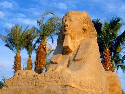В Египет с малышом