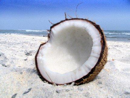 Кокосовый орех и его полезные свойства для всей семьи